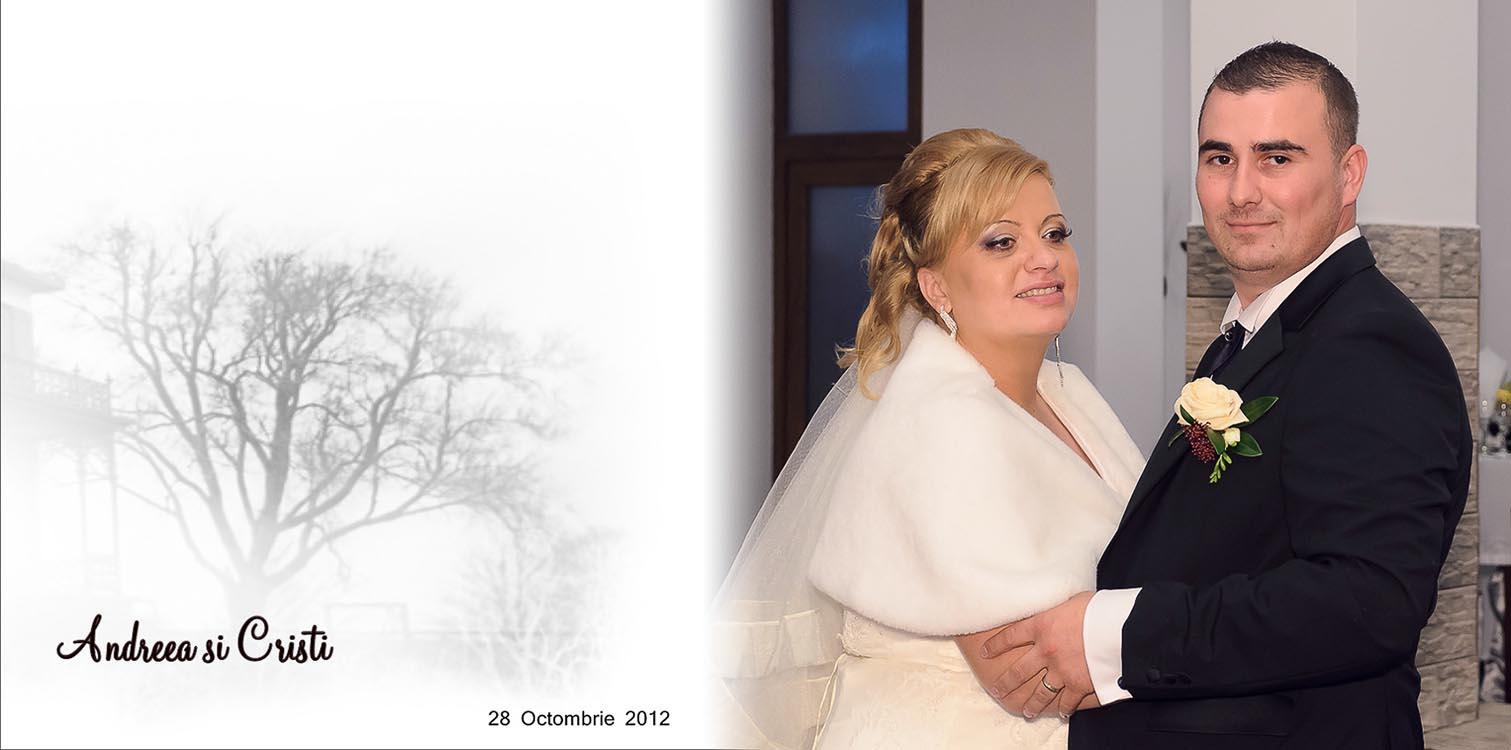andreea si Cristi - fotocarte nunta Tandarei